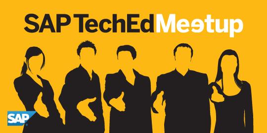 Sap teched meetup 2013